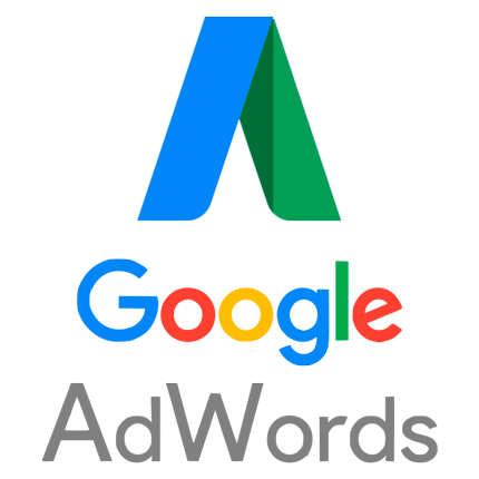 Agencia Google Adwords. Google Ads. Infoter